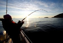 Photo of How to choose a fishing rod and intensity hwimsae